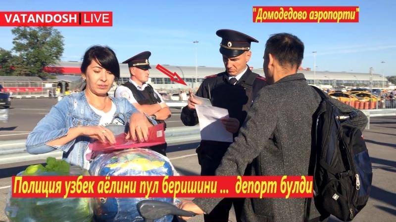 Полиция узбек аёлини пул беришини, депорт булди Домодедово аэропорти