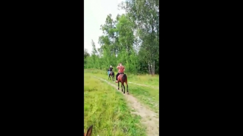 Катание на лошадях в Марфино