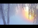 Robin Guthrie - Warmed By The Winter Sun (2) (1)