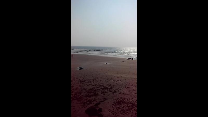 Индия(Гоа)2017. Maison Ocean 3*,пляж Ашвем