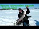 Fish hungry - активатор клева для твоего улова