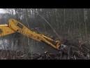Бобры уничтожение плотины