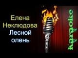 Елена Неклюдова - Лесной олень ( караоке )