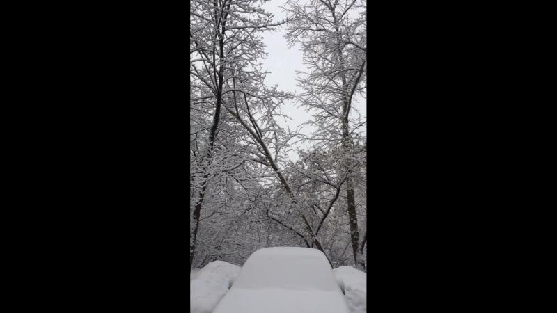 Зимнее утро в Ростокино
