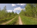 Покатушка Огорелье - Тёсовское болото - Ушницы - Оредеж