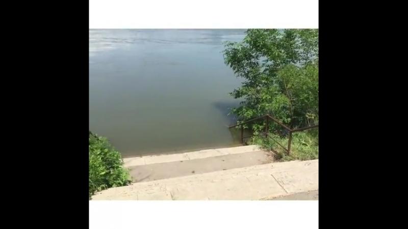 Пристань. По состоянию на 19 мая 2018 года на территории ответственности Донского БВУ водохозяйственная обстановка стабильная.