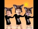 смешное видео - танец котика