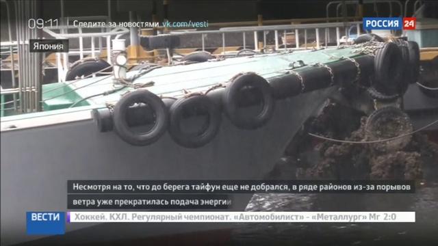 Новости на Россия 24 Лайонрок напугал японцев