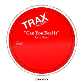 Larry Heard альбом Can You Feel It