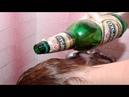 Aplica una cerveza en tu cabello, y los resultados no los podrás creer! Increíble!!