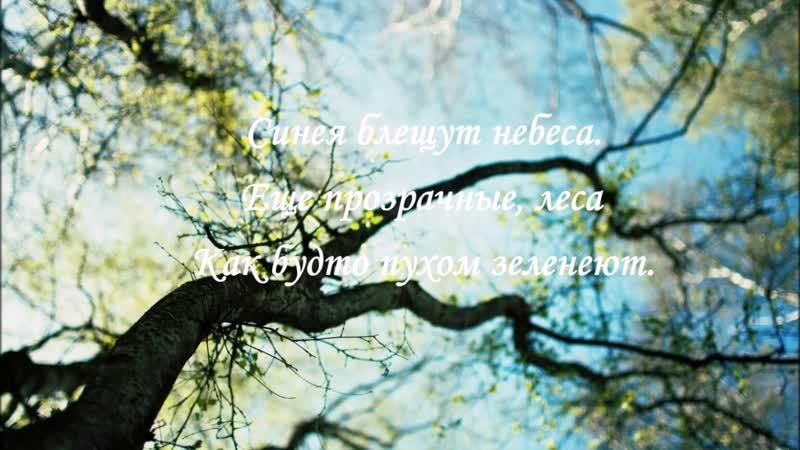 Зубкова Виктория МБУК ЦБС г Апатиты Городская детско юношеская библиотека Времена года в пейзажной лирике Пушкина