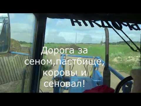 Дорога за сеном,наше пастбище,коровы и сеновал!