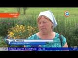 Чупакабра повадился убивать домашних животных в Слонимском районе