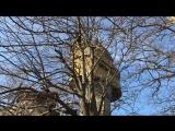 Максим Поляков — Live