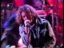 Pearl Jam - Animal - MTV Video Music Awards 1993 [High Quality]