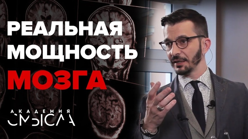 Память и мозг: воспоминаний не существует