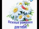 Doc199236033_467496302-1.mp4