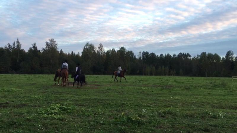 Ксюша, Настя, Андрей и Вика, полевой тренинг