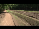 Реставрация Монрепо: восстановлен дождевой сад