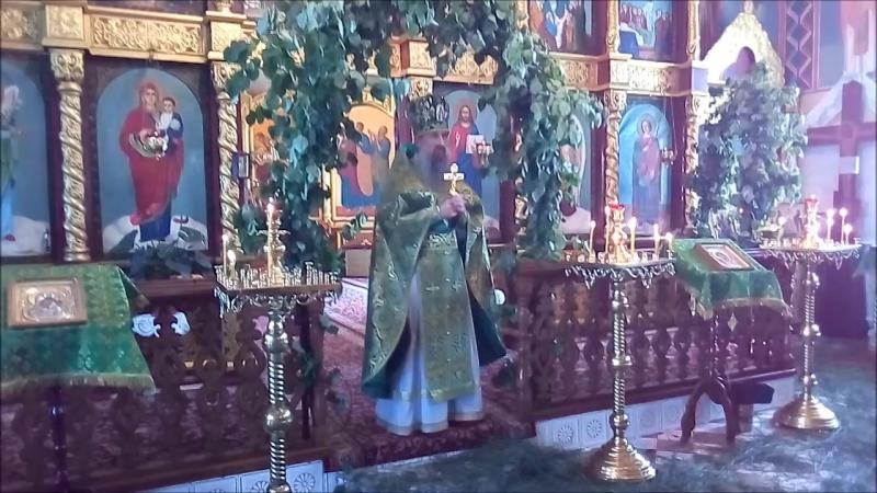 День Святой Троицы. Праздничная служба, храм Великомученика Димитрия Солунского.