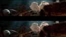 Легенды ночных стражей 3D (2010) - 3D, мультфильм, фэнтези, боевик, приключения
