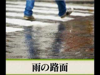 2018-06-15 俳句 - 雨の路面