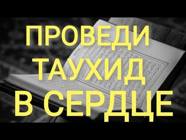 ПРОВЕДИ ТАУХИД В СЕРДЦЕ