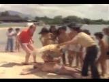 Комар - возбудитель _ O Inseto do Amor _ The Love Bug (1980)