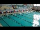 50 метров дельфин