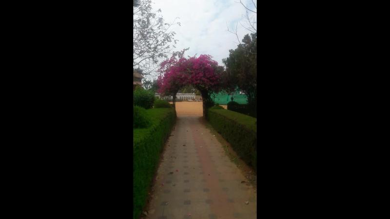 Зоопарк Кералы