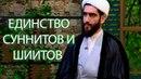 Единство шиитов и суннитов с точки зрения шиитских имамов Отношение непорочных к оппонентам №9