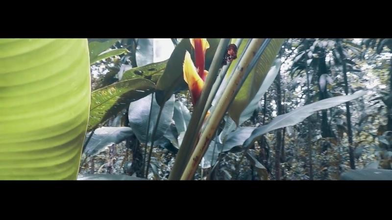 Laure - Short Film