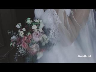 Vellichor Film Wedding LUT Before After