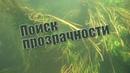 Как определить прозрачность воды Подводная охота с Александром Кочубеем