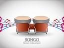 Latin Percussion Bongo Conga Beat 90/2