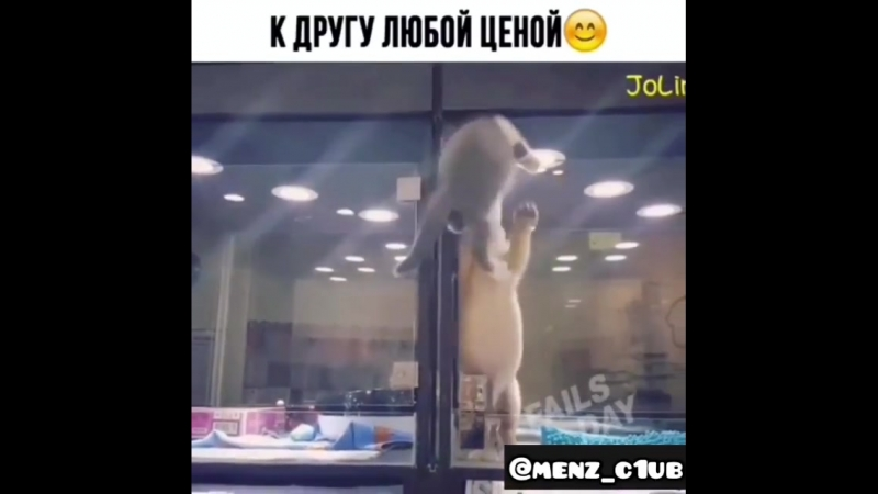 Menz_c1ub-20180815-0001.mp4
