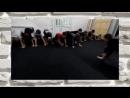 Тренировка детской группы