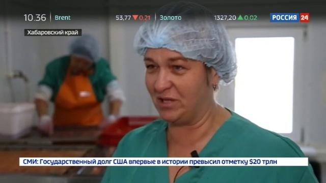 Новости на Россия 24 • Крупные рыбопромышленники оставили жителей Приамурья без улова
