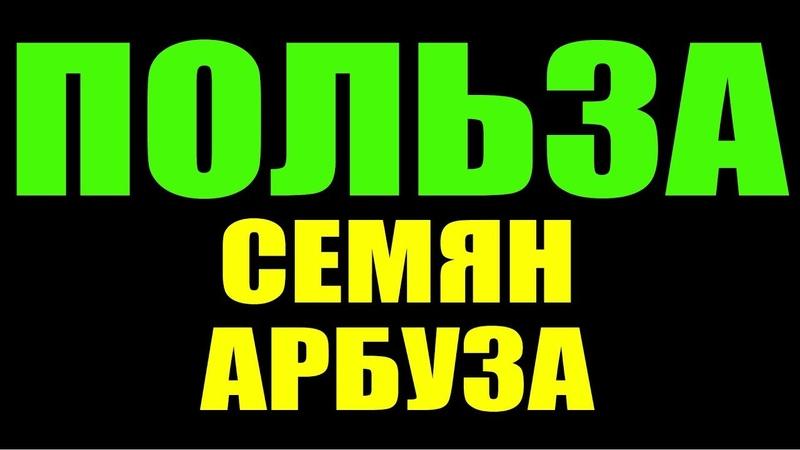 СЕМЕЧКИ АРБУЗА - ПОЛЕЗНЕЕ МЯКОТИ !