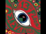 Roller Coaster - 13th Floor Elevators@1966
