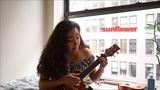 Sunflower - Rex Orange County 🌻 (ukulele cover)