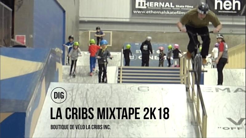 La Cribs at Le Taz Skatepark - Arnaud Big T - DIG BMX