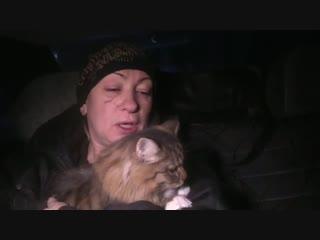 Видео со спасенной во время разбора обломков дома в Магнитогорске кошкой. Животное передали волонтерам-зоозащитникам.