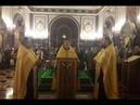 Народный соборный молодёжный молебен подле десницы свт Спиридона Тримифунтского