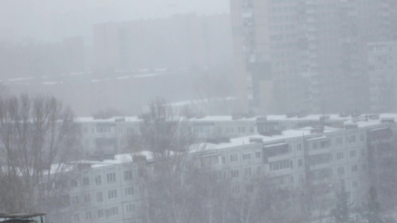 День смеха в Тольятти - обхохочешься !