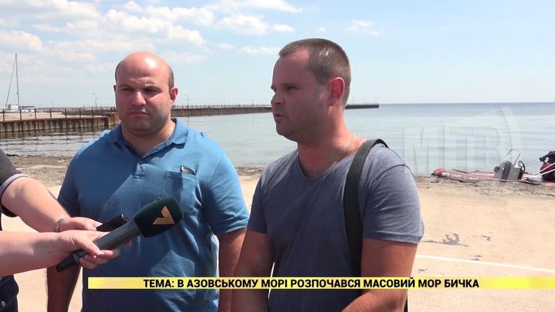 2018 08 08 В Азовському морі розпочався масовий мор бичка