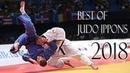 ЛУЧШИЕ БРОСКИ 2018 Best of Judo Ippons 2018