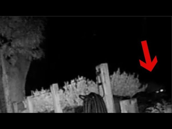 Demon or Alien caught on trail cam real footage