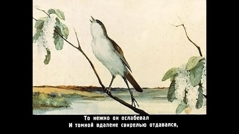 Осел и соловей басня И А Крылов