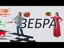Игорь Жукарёв о развитии и росте вегетарианского движения в России Зебра